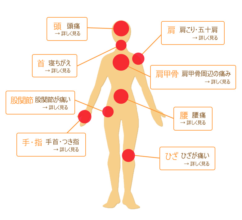 症状別骨格図